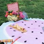 Watermelon Picnic Blanket 23 The House That Lars Built
