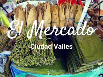 Visiting the town market of Ciudad Valles, SLP - 1