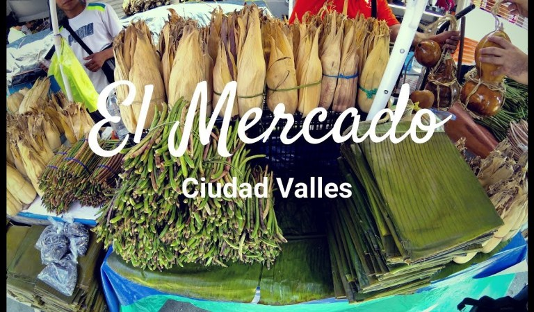 Visiting the town market of Ciudad Valles, SLP