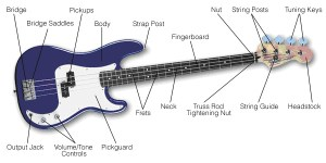 Buying Guide: How to Choose a Bass Guitar | The HUB