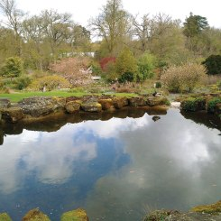 Another part of the Wisley rockery.
