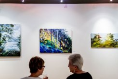 gallery-in-the-park---interior-001
