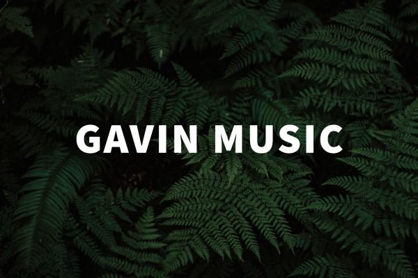 Interview: Gavin Sachintha