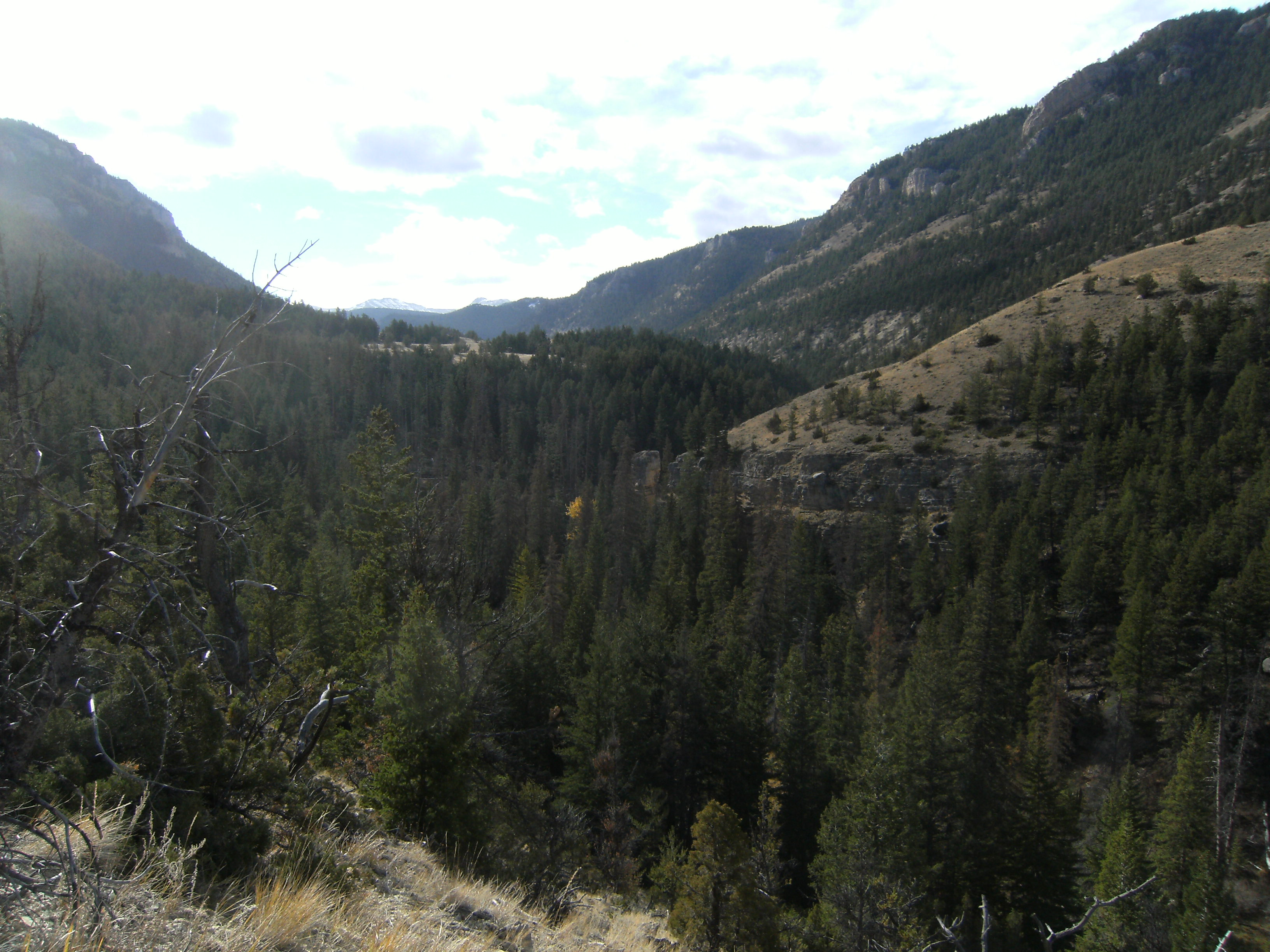 Looking into Dead Indian Valley