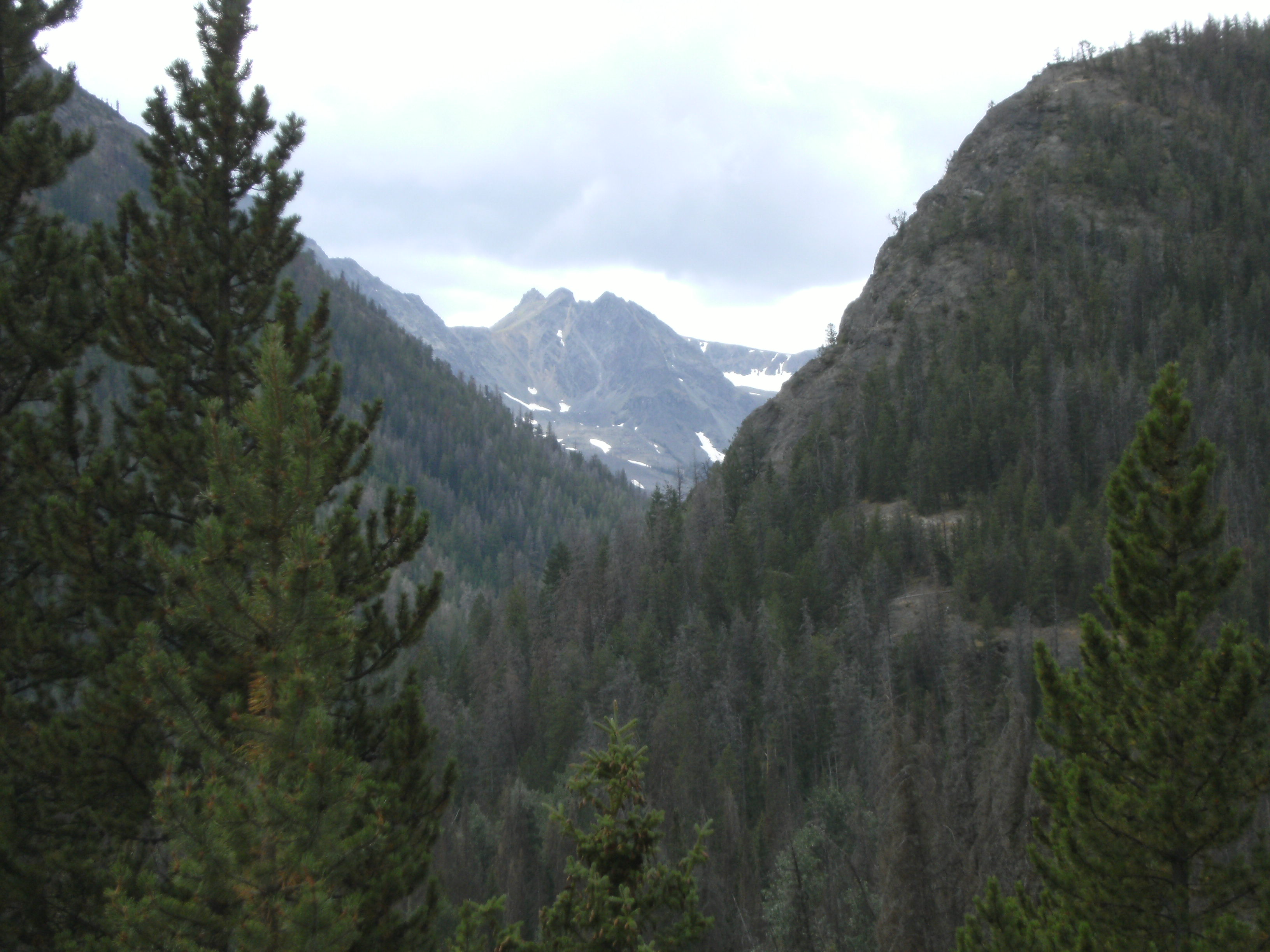 Past the bear gate, the Absarokas are the eastern border of Yellowstone's wilds