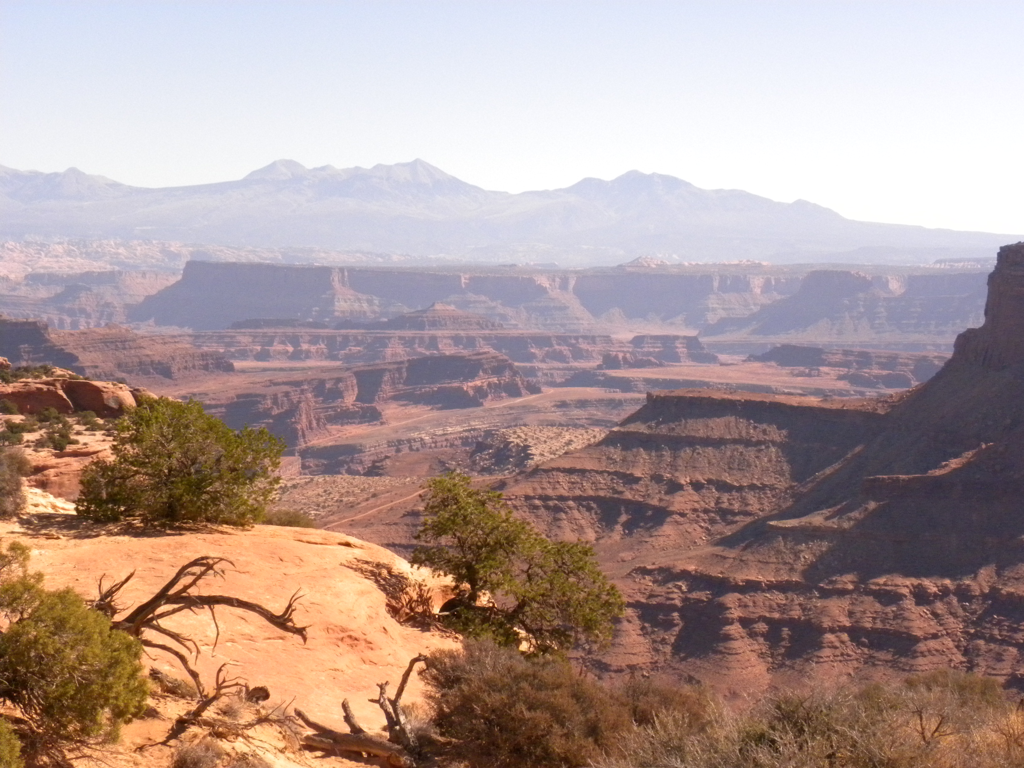 One view of Canyonlands