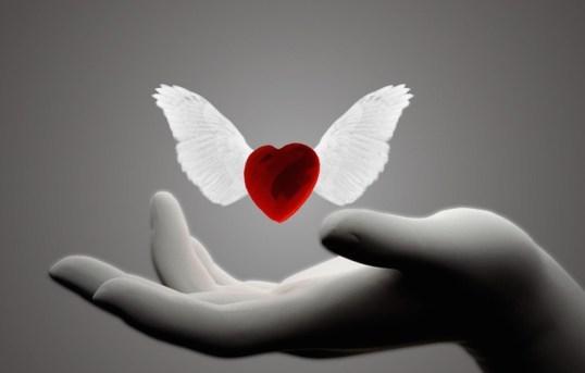 9867-heart-with-wings-1920x1080-digital-art-wallpaper