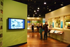 american-history-museum-food