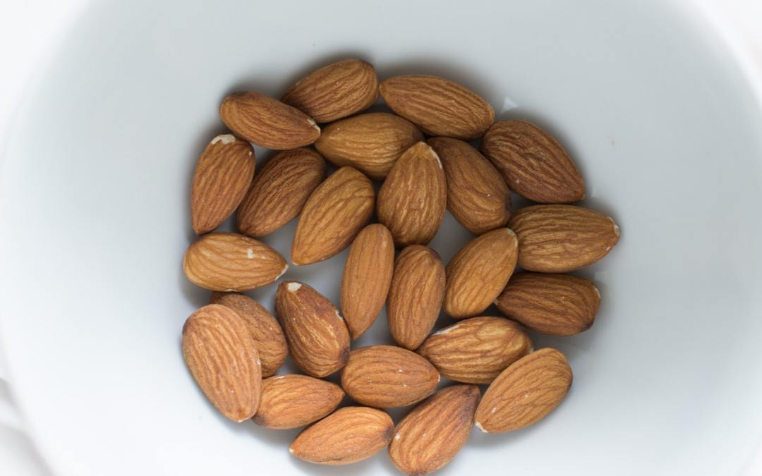 sustainable nut and seed alternatives