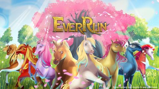EverRun
