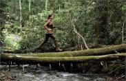 Movie Still: Katniss Running through Woods in District 12