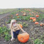 Pumpkin Pie | Just a Little Fall Fun
