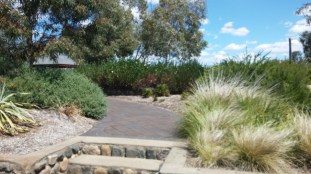 path at oxley lookout