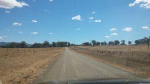 road from tamworth to currabubula