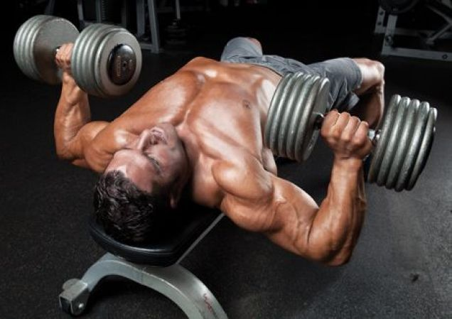 dumbbell bench press chest workout solid chest