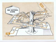 South Bank Natural Scene Map