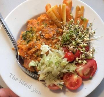 The ideal you, Silje E Vassøy, matglede, mat for sunn kropp, reversere sykdom