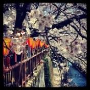 Nakameguro, Tokyo - source: pinterest