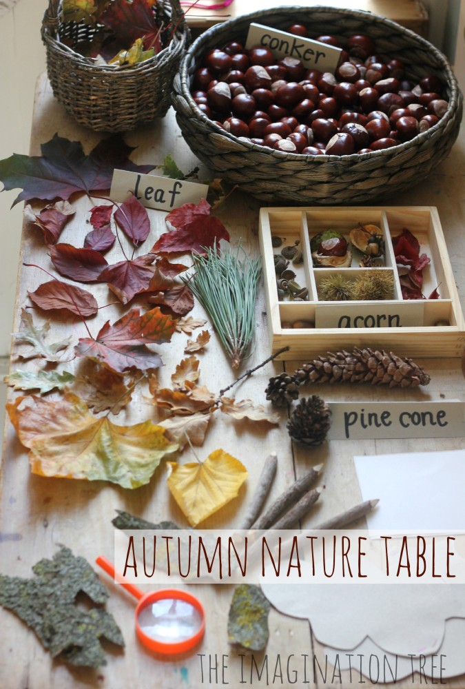 Autumn Nature Exploration Table The Imagination Tree