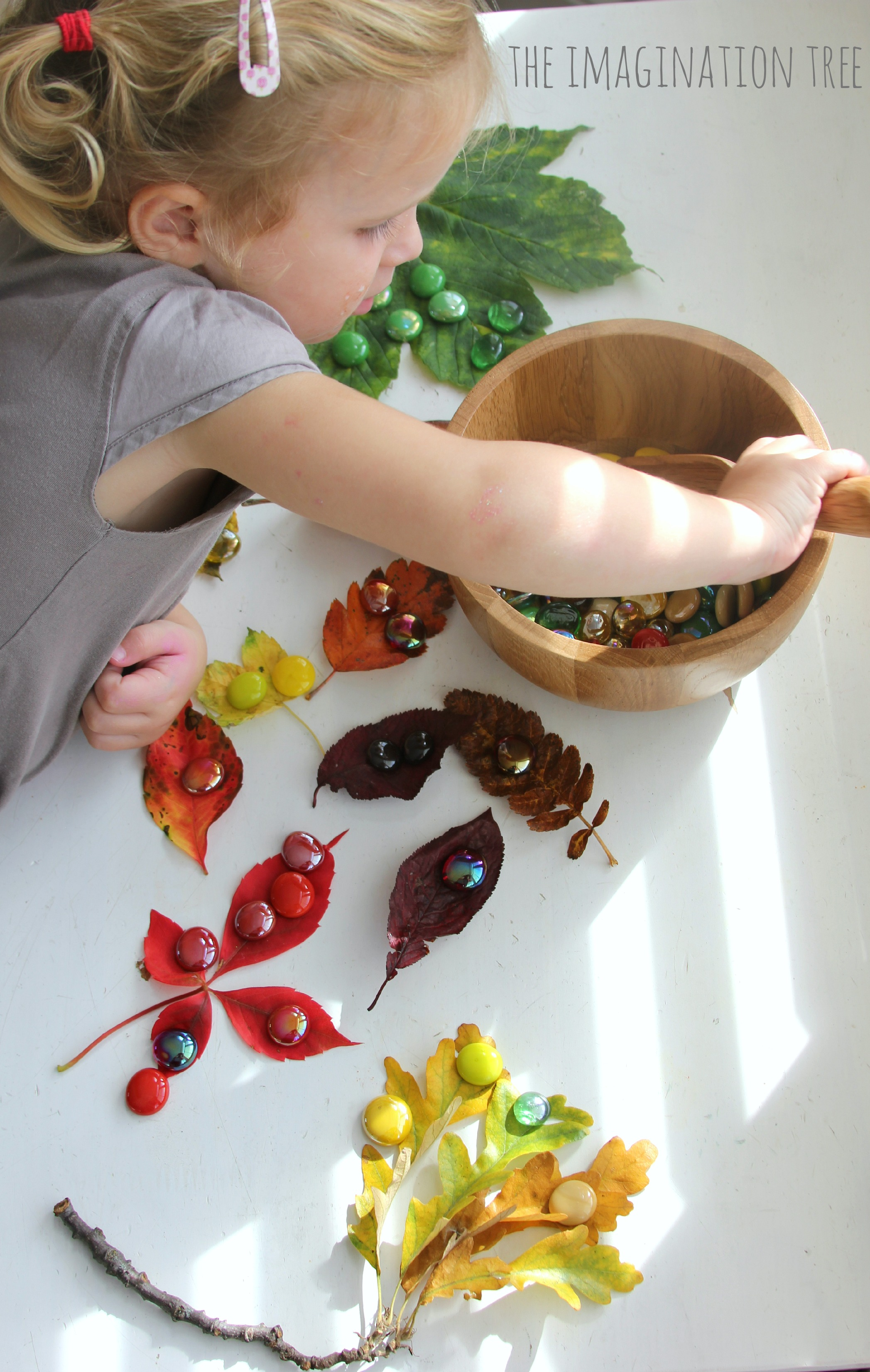 Autumn Leaves And Gems Colour Sorting Activity
