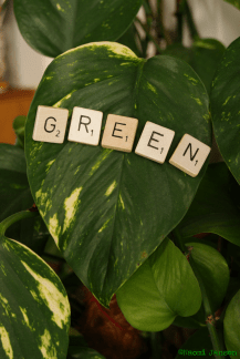 8) G is for Green