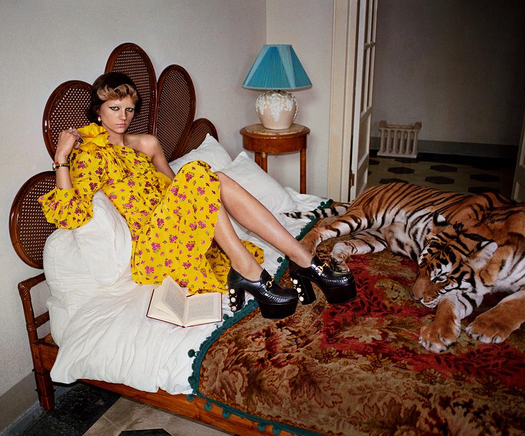 Gucci-spring-2017-ad-campaign-the-impression-04
