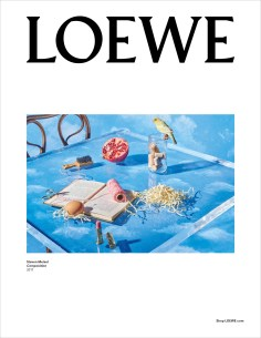 Loewe-fall-2017-ad-campaign-the-impression-22