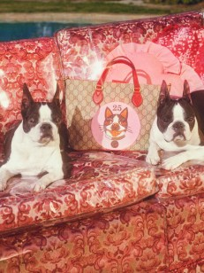 Gucci-year-of-the-dog-collection-the-impression-02