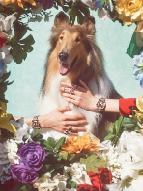 Gucci-year-of-the-dog-collection-the-impression-21