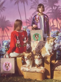Gucci-year-of-the-dog-collection-the-impression-24