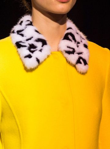 Carolina Herrera Fall 2018 Fashion Show Details