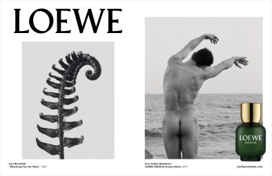 loewe-beyond-the-skin-ad-campaign-spring-2018-the-impression-012
