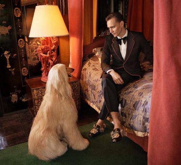gucci-cruise-2017-tom-hiddleston-ad-campaign-the-impression-3
