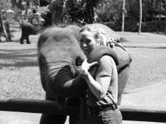 Melanie and baby Elephant, Elephant Safari Park, Bali, Indonesia