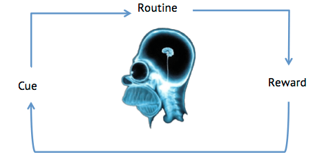 Image of Homers brain showing cue-routine-reward