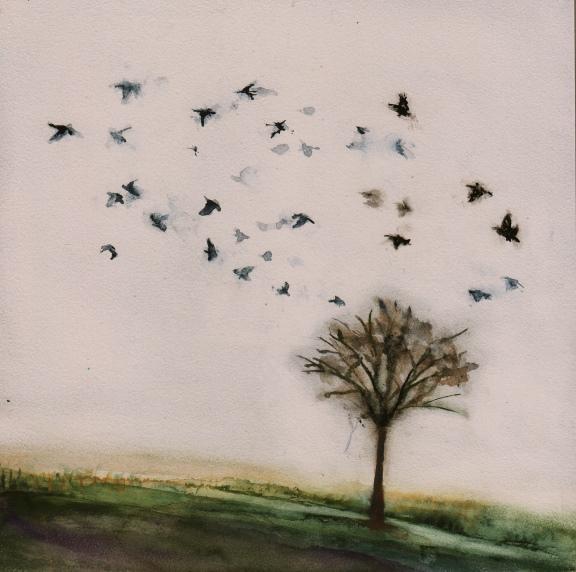 Flight. Susan Solomon