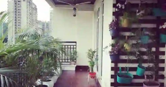 in photo balcony of a home with many plants