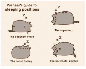 pusheen-sleeping