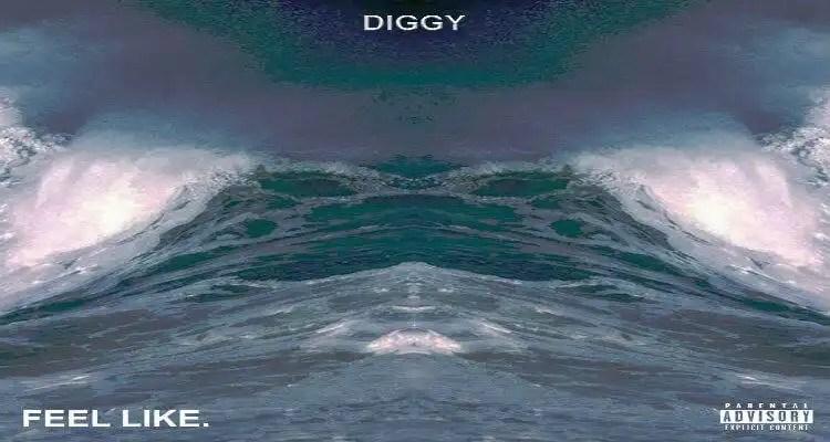 Diggy - FEEL LIKE