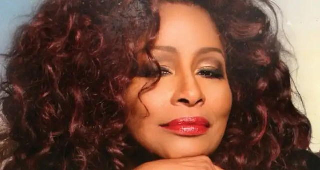Chaka Khan Among Women Of Power Legacy Award Honorees