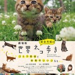 "Mitsuaki Iwago's World ""Cats"" Travelogue"