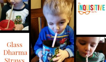 Glass Dharma Straws Review & Italian Soda Recipe