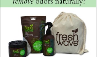 Natural Odor Eliminators: Fresh Wave Review