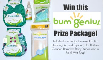Bum Genius 3.0 Elemental Giveaway!