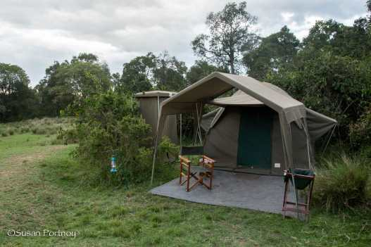 My home in Kenya