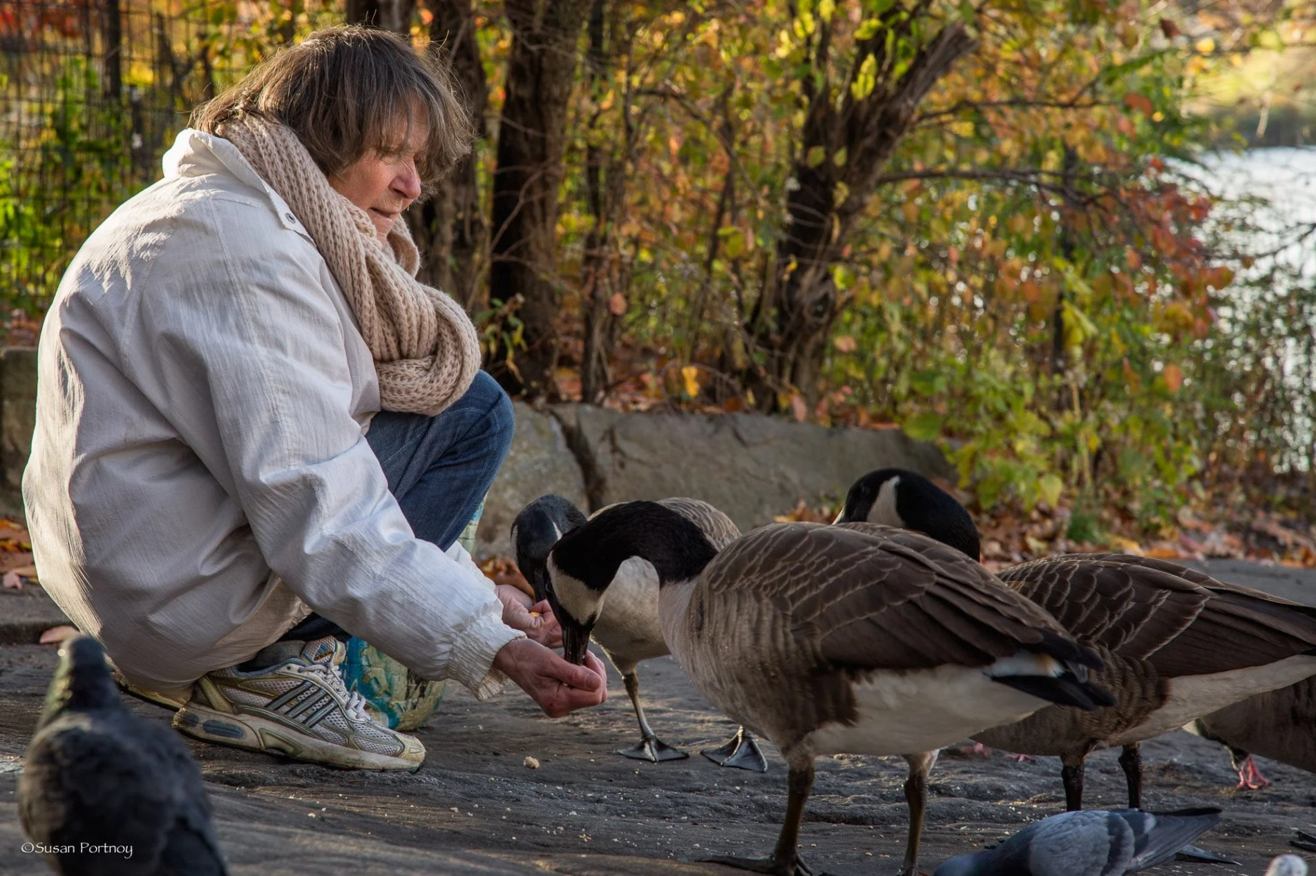 Lillian Bobo feeds two geese at once in Central Park