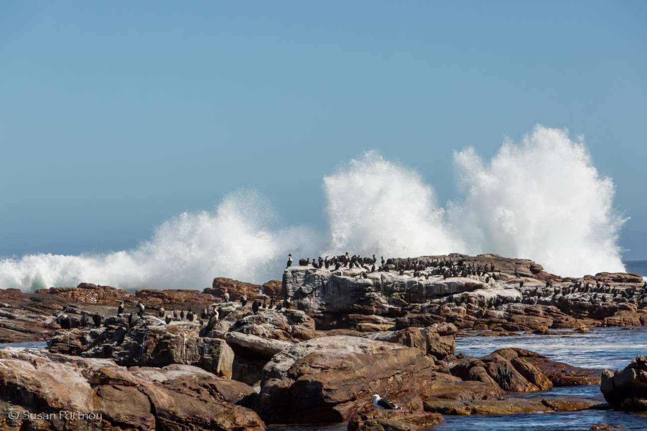 Waves crash upon the shore at Cape Point,