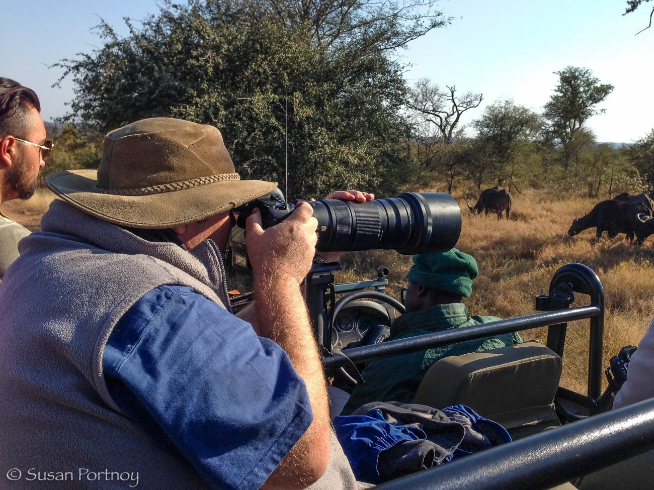 Large man photographing buffalo from a jeep