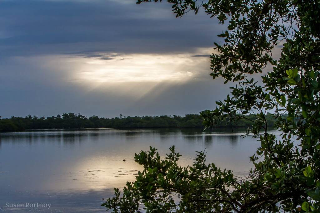 Sunrise on Tarpon Bay - Best Guide to the Ding Darling Wildlife Refuge on Sanibel Island-122901