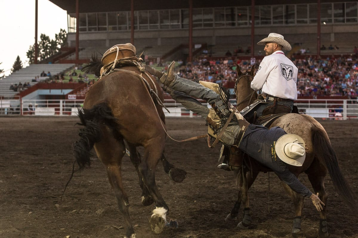 Cowboy falling off a bucking bronco